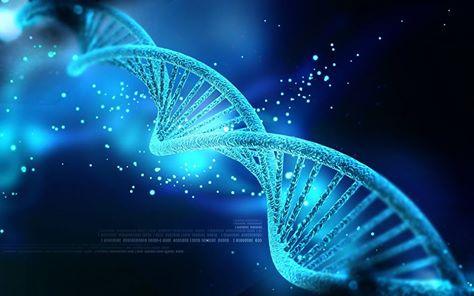 Epigenetik56f157dbbfb99