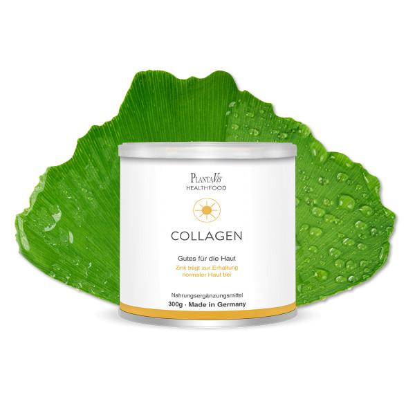 Collagen Drink - Gutes für die Haut